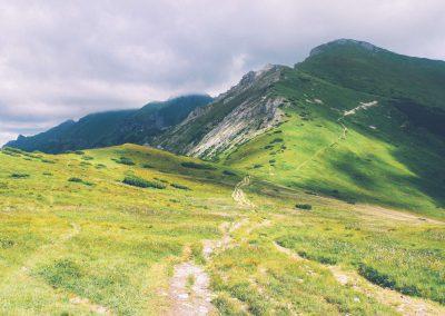 fal_green-mountain